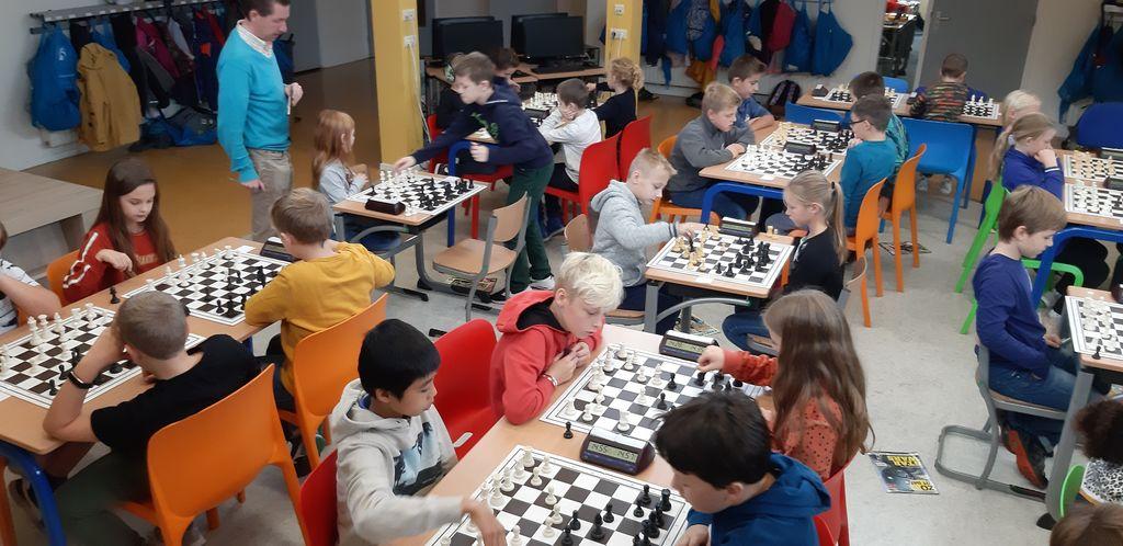 schaakschool-colsen-zeeuwsvlaanderen